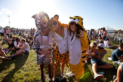 Groovin The Moo - Maitland