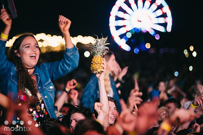 BIG PINEAPPLE MUSIC FESTIVAL