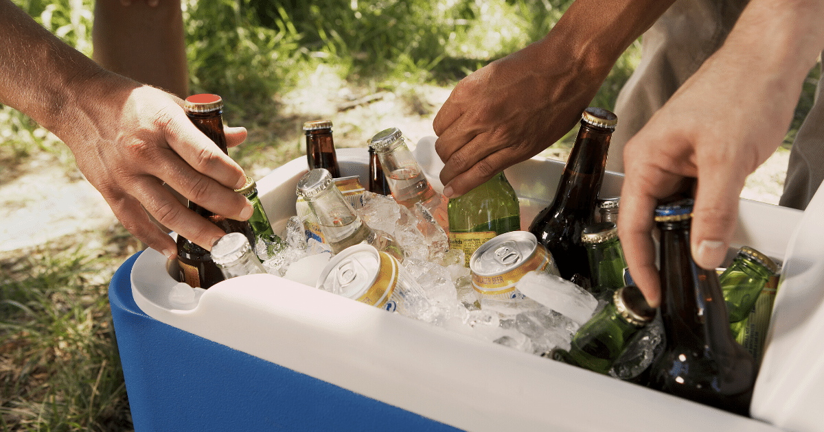 Large cooler for camping at Bluesfest