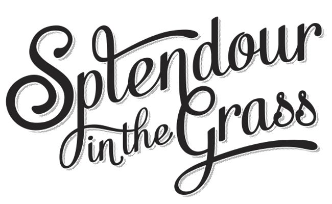 SPLENDOUR IN THE GRASS 2013 - 3 DAY, SINGLE DAY AND CAMPING TICKETS SOLD OUT!