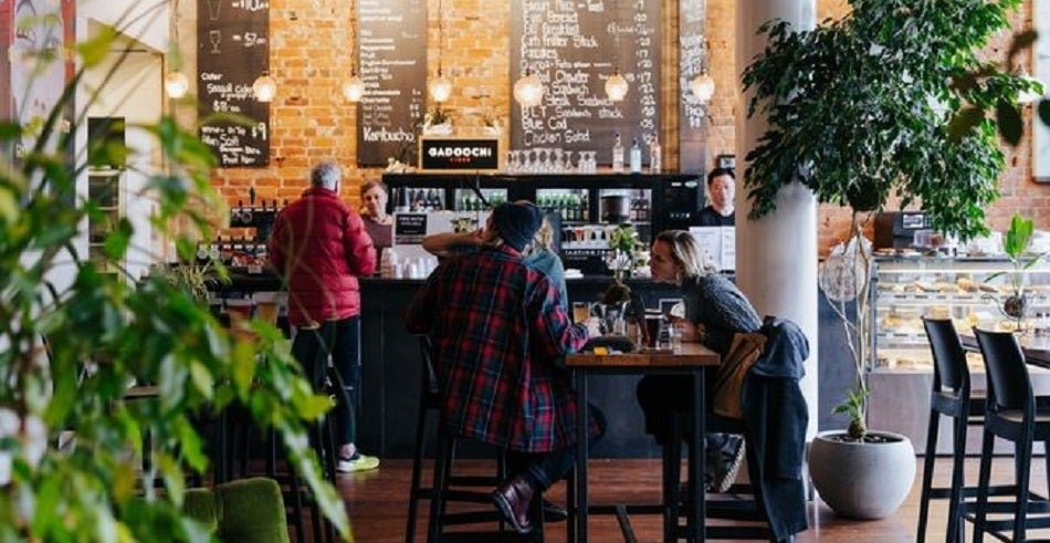Tuatara Cafe New Zealand