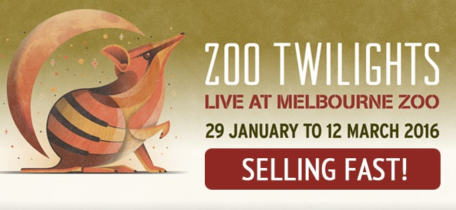 It's A Record Selling Year For Melbourne Zoo Twilights, And Tickets Are Going, Going, GONE!