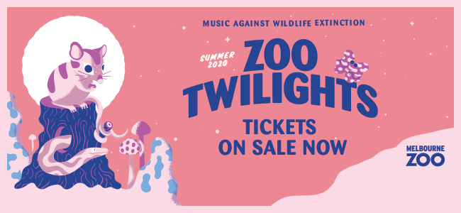 Melbourne Zoo Twilights...