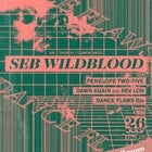 Dance Flaws: Seb Wildblood (Church | Coastal Haze)