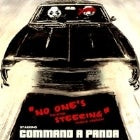 Command A Panda - Single Launch