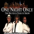 One Night Only - The Bee Gees Tribute Show