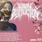 "Within Destruction ""Yokal Australian Tour"" NEW DATE"