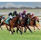 Murray Bridge Racing Club - Trades Day - May 22nd 2021