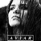 AVIAR/ THE PITYS/ WITNESS TO TREASON & DJ JORDI