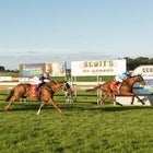 Mount Gambier Racing