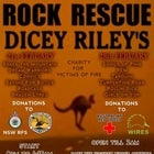 Rock Rescue Fundraiser 1