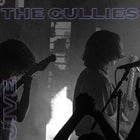 The Gullies