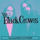 Black Crowes by Birds...