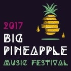 Big Pineapple Music Festival 2017