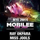 FACT NEW YEAR'S EVE 2014 MOBILEE ROOFTOP SESSION w/ RAY OKPARA, MISS JOOLS at The MCA, SYDNEY, AUSTRALIA
