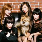 DUM DUM GIRLS (USA) WITH SPECIAL GUESTS CABINS & BLOODS