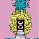 Big Pineapple Music Festival 2019