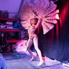Mr Falcons Burlesque - December