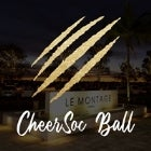 CheerSoc Ball
