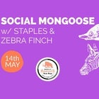 Social Mongoose w/ Staples and Zebra Finch