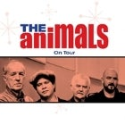 THE ANIMALS - GREATEST HITS AUSTRALIA TOUR