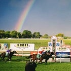 Scott Group of Companies Mount Gambier Gold Cup