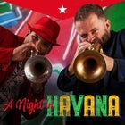A Night in Havana feat Adam Hall and the Young Guns - SATURDAY