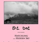 BIG DOG // Hatchling // Hidden Sky