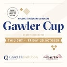 2019 Holdfast Insurance Brokers GAWLER CUP