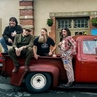 HAYSEED DIXIE w/ special guests THE PIGS