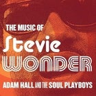 The Music of Stevie Wonder - The Rhythm Spectacular - SATURDAY