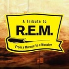 A Tribute to R.E.M. - From a Murmur to a Monster