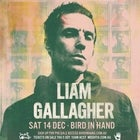 Liam Gallagher at Bird in Hand Winery