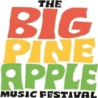 Big Pineapple Music Festival 2018